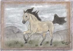 image, painting, mustang, freedom, drawing, horse, wild