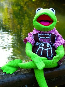 kermit, frog, doll, costume, leather pants