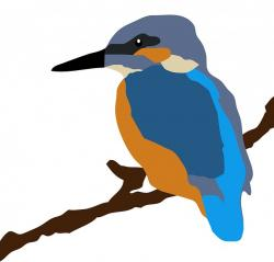 kingfisher, bird, animal, branch, perched, perching