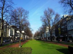 krefeld, germany, streets, buildings, trees, sky