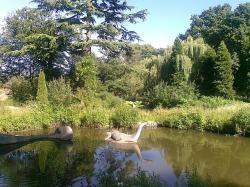 lake, summer, park, landscape, water, crystal palace