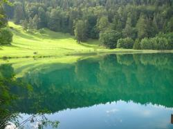 lake, water, summer, valley, hill, forest, trees