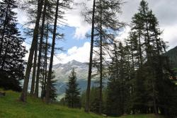 landscape, mountains, trees, spring, alpe, prato, sky