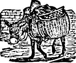 large, small, donkey, load, carrying, burro, baskets