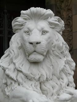 lion, statue, fig, gypsum, white, animal, chalk figure