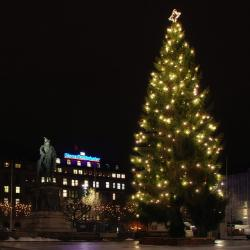 malmo, sweden, night, christmas tree, hotel, statue