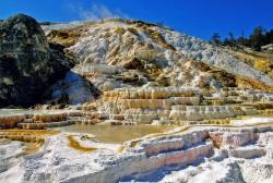 mammoth hot springs, yellowstone national park, water