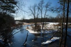 massachusetts, river, stream, forest, reflections