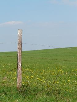 meadow, nature, landscape, wide, infinity, fence