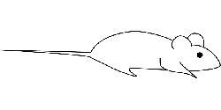 mouse, small, outline, little, animal, rodent, simple