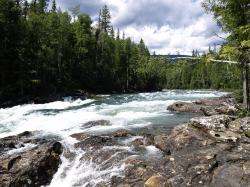 murtle river, wells gray provincial park