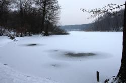nature, winter, grunewald, see, schlachtensee, snow
