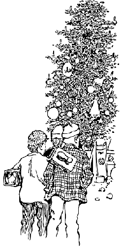 new, decorated, people, tree, christmas, looking