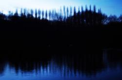 night, pond, trees, landscape, out of focus, lake