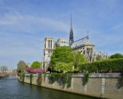 notre dame, paris, france, seine, river, water, flowers
