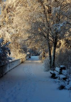oulu, finland, park, trail, path, winter, snow, ice