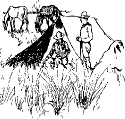 outline, horses, camping, range, cowboys, horse, camp