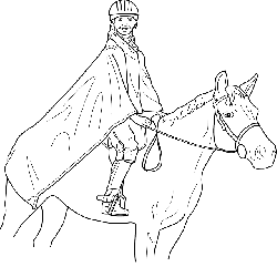 outline, man, cartoon, horse, horses, draw, animal