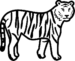 outline, page, wild, stripes, tiger, standing, animal