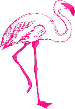 outline, pink, bird, wings, art, flamingo, long, animal
