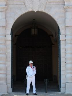 palace guard, guard, man, person, uniform, white