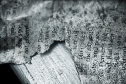 paper, old, vintage, ripped, document, scribble