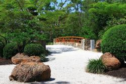 path, bridge, tree, garden, japanese, florida, nature
