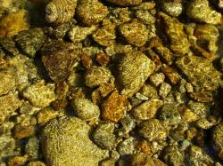 pebble, water, river, textures, stone, background