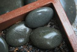 pebbles, smooth, large, grey, shiny, wet, box, brown