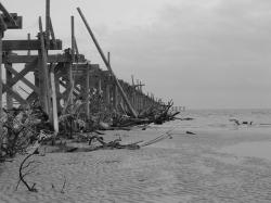 pier, ocean, dock, destroyed, hurricane, storm, black