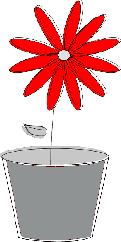 potted plant, flower, daisy, spring, bloom, blossom