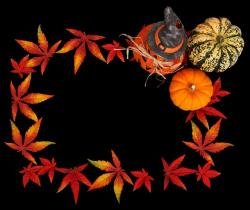pumpkin, autumn, background, dark, frame, color