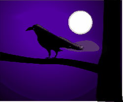 raven, crow, bird, dark, full moon, night, nature