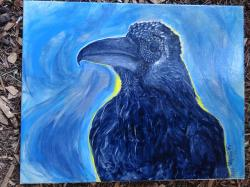 raven, crow, bird, feathers, painting, acrylic