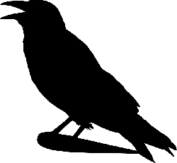 raven, crow, silhouette, cartoon, bird, stand