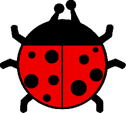 red, black, flat, ladybug, colors, wings, insect, spots
