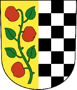 red, black, green, white, coat, arms, checkered