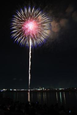 red, colorful, flower, fireworks, sky, night, japan