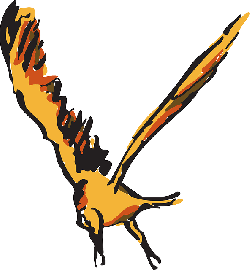 red, orange, bird, flying, wings, art, animal, feathers