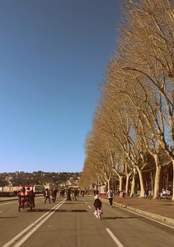 road, via, naples, city, sea, waterfront, trees