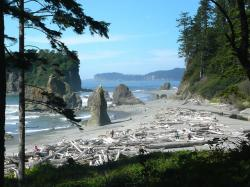 ruby, beach, washington, usa, landscape, shoreline