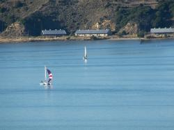 sailboat, catamaran, carquinez, boating, sailing vessel