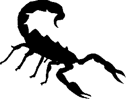 scorpion, insect, silhouette, sting