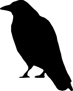 silhouette, bird, crow, ground, wings, standing