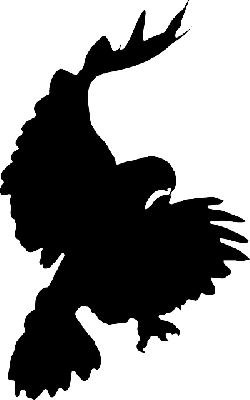 silhouette, cartoon, eagle, bird, crow, flying, falcon