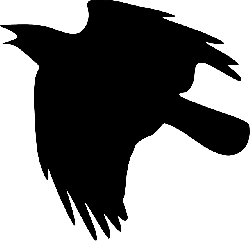 silhouette, cartoon, eagle, birds, bird, crow, fly