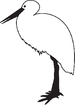 simple, outline, bird, art, stork, animal, feathers