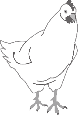 simple, outline, farm, bird, chicken, art, animal