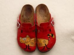 slippers, birkenstock, cat, red, colorful, shoe, run
