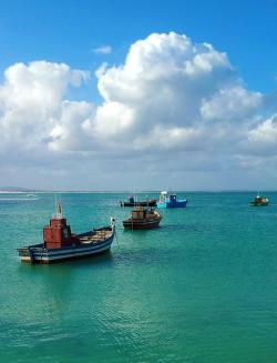 south africa, ocean, sea, bay, fishing boats, boats